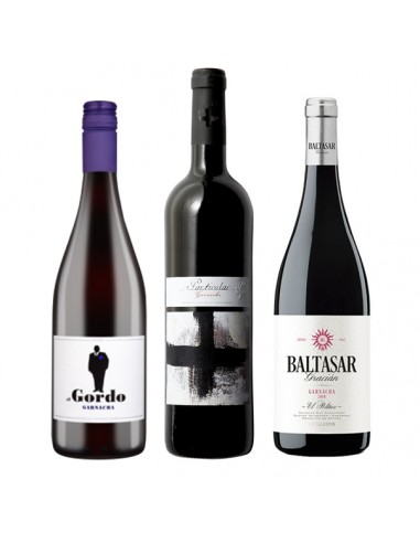 Particular Joven + Gordo + Baltasar Gracián tres vinos aragoneses a un precio imbatible.