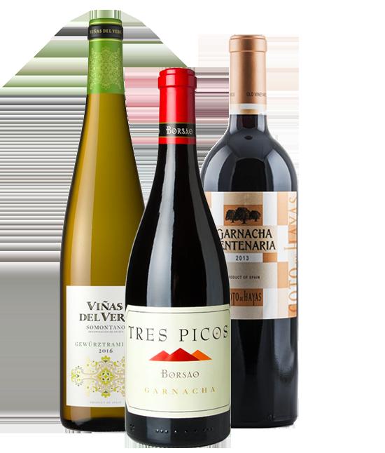 Selección Vinos Aragoneses